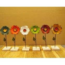 Fleurs sur socle D9 H25cm